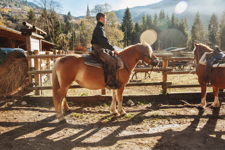 Norma - Avelignese Bram's Ranch