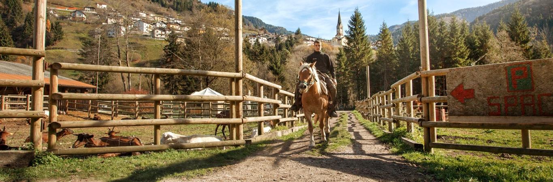 Mettiti in contatto con bram 39 s ranch for Ranch house con cantina