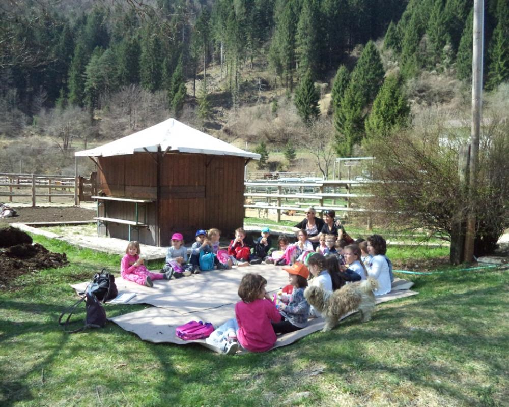 Picnic al ranch